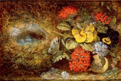 Flowers and Bird's Nest with Butterfly and Mushroom